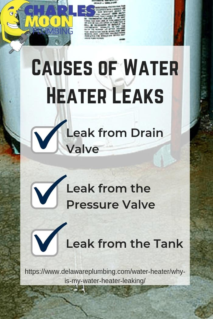 Water Heater Leakage checklist infographic